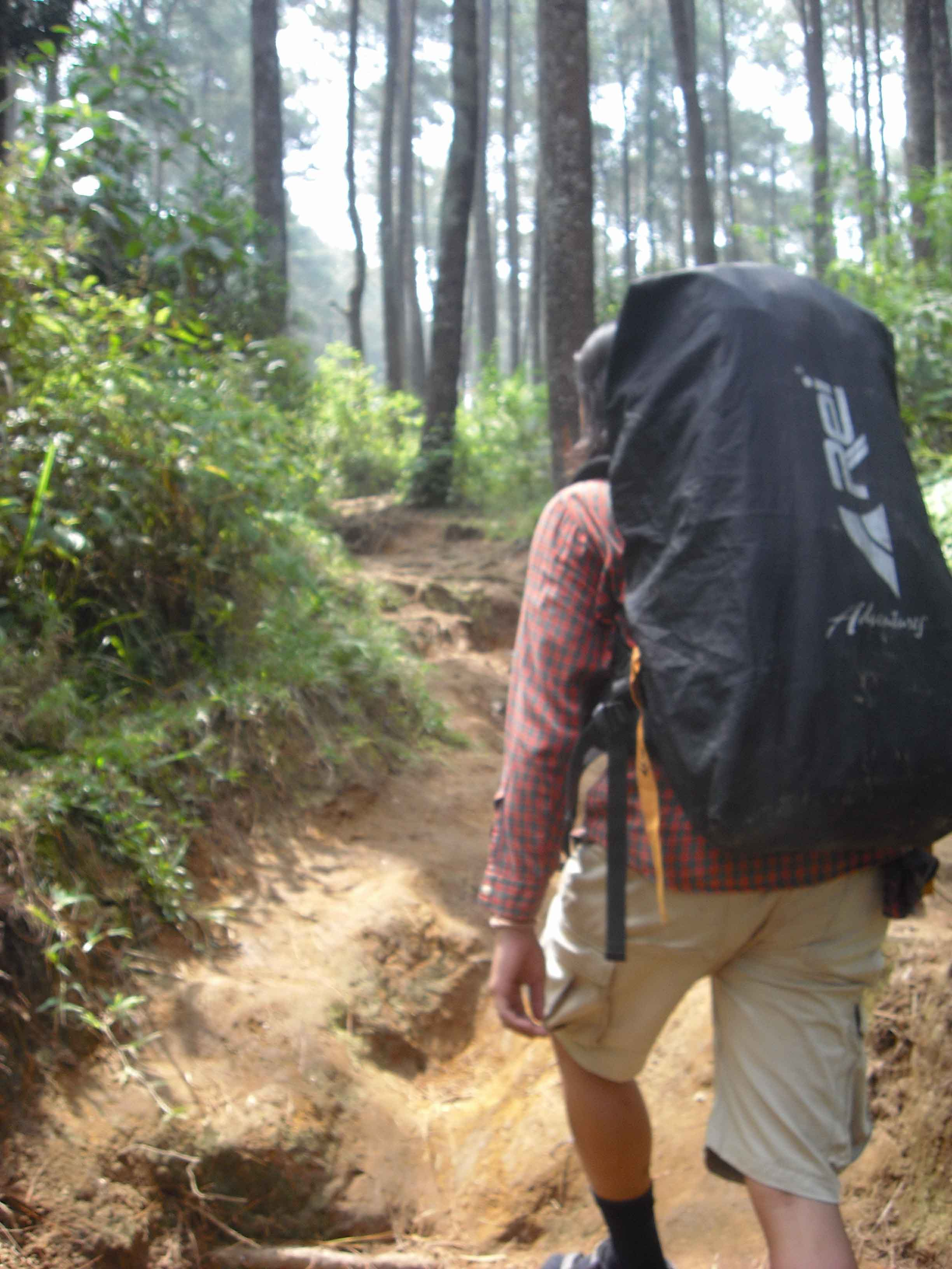 Sensasi Alam Gunung Jayagiri