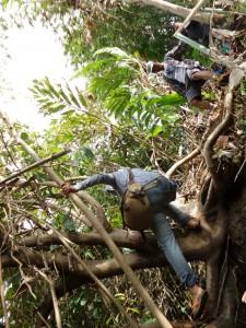 Akses Jalan ke Curug Tengah - Geopark Ciletuh Sukabumi