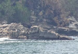 Batu Kodok - Geopark Ciletuh Sukabumi