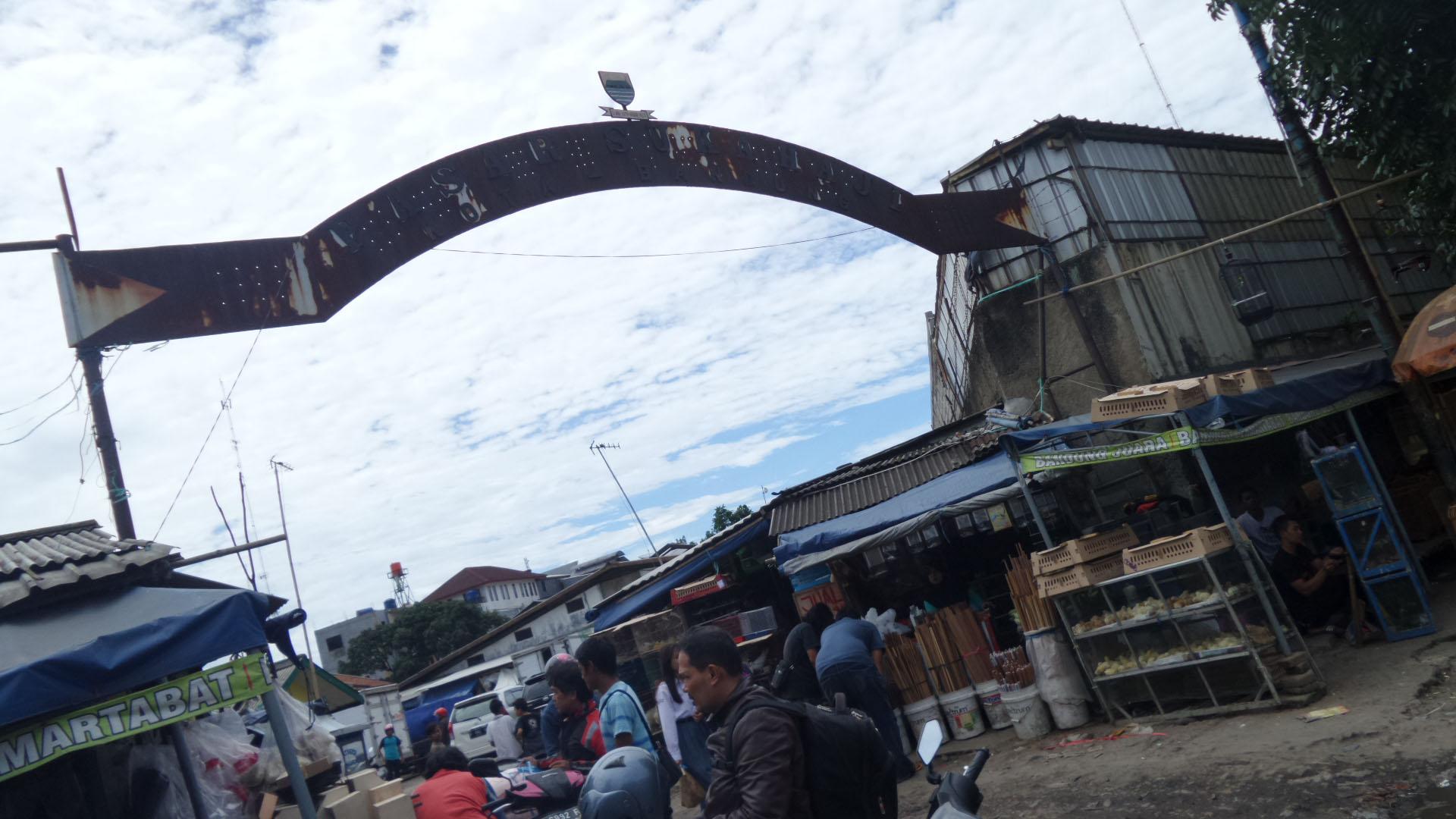 Eksplorasyik Pasar Burung Sukahaji Bandung