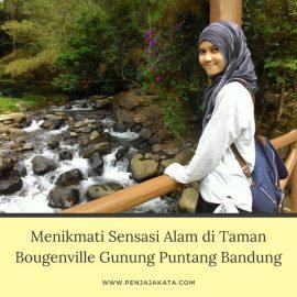 Menikmati Sensasi Alam di Taman Bougenville Gunung Puntang Bandung